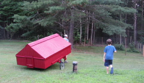 Moving the Coop